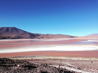 22 de Abril de 2016 - 22th April 2016. Laguna Colorada - Reserva Nacional Eduardo Avaroa - Red Lagoon - Eduardo Avaroa National Reserve.